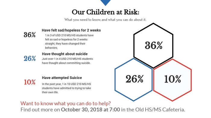 Our Children at Risk Infographic